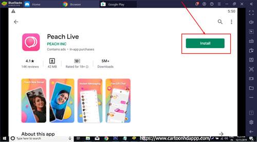 Peach Live Pro for Windows 10